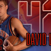 The Hoop Docs Sit Down With David Lee to Talk Free Agency