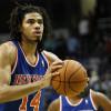 Amar'e Stoudemire's Injury Paves Way for Chris Copeland of NY Knicks