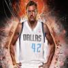 Dallas Mavericks Officially Sign David Lee