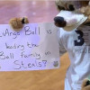 Bucks Mascot Trolls Ball Family